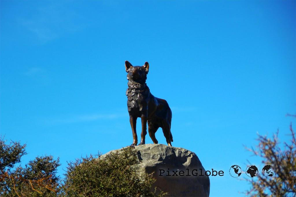 Huetehund
