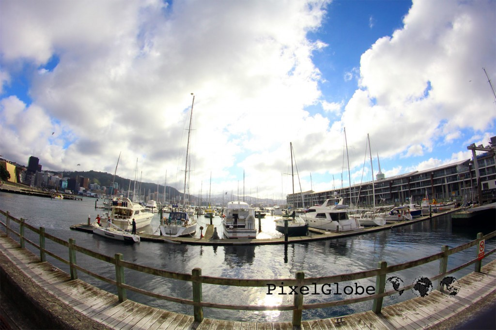 Harbor5