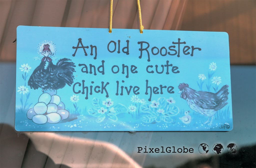OldRooster