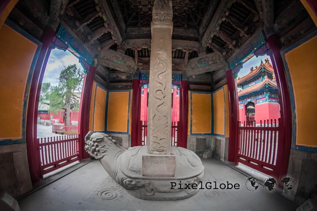 Peking-18