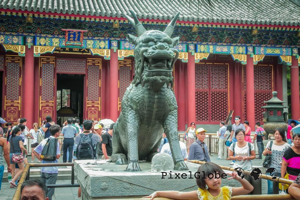Peking-48