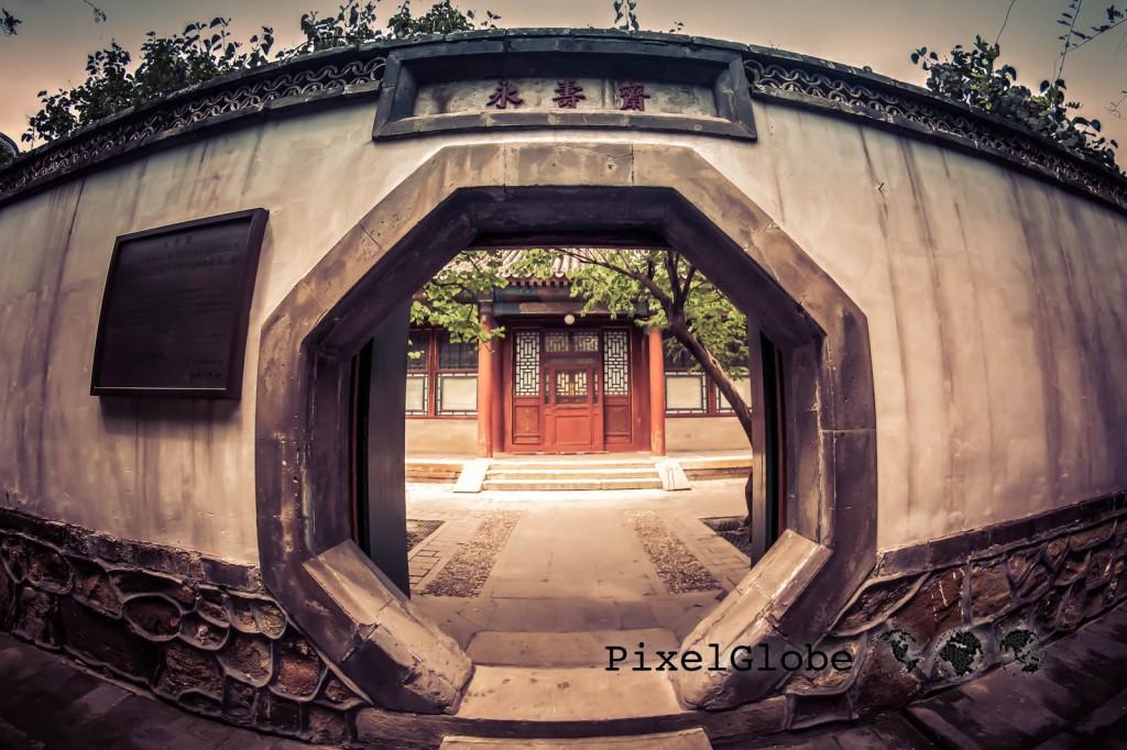 Peking-51